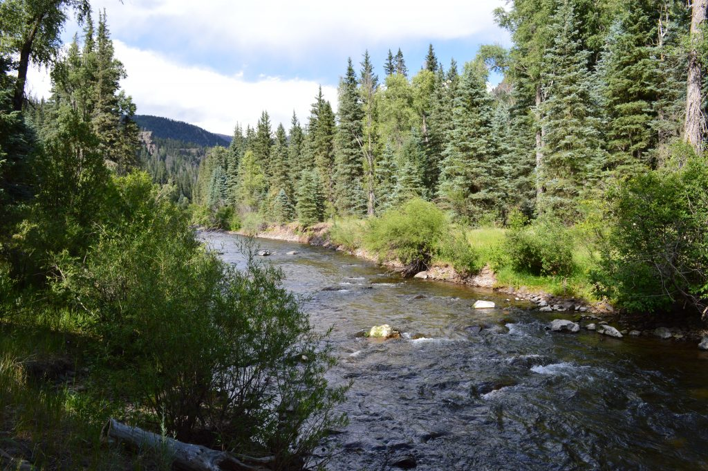 Free Colorado Campsite near Pagosa Springs and Wolf Creek Pass